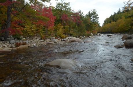 fall-colors-984668_640