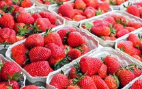 strawberries-1350482_640