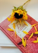 book-912723_640