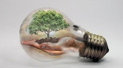bulb-2368396_640.jpg