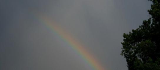 rainbow-185401_640
